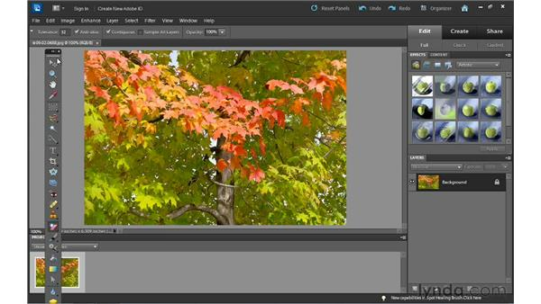 Tips for using the editing tools: Photoshop Elements 10 Essential Training
