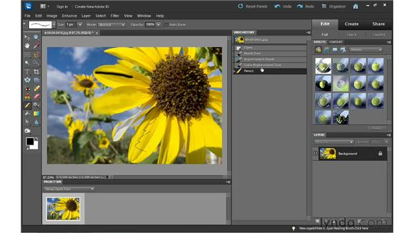 Undoing your work: Photoshop Elements 10 Essential Training