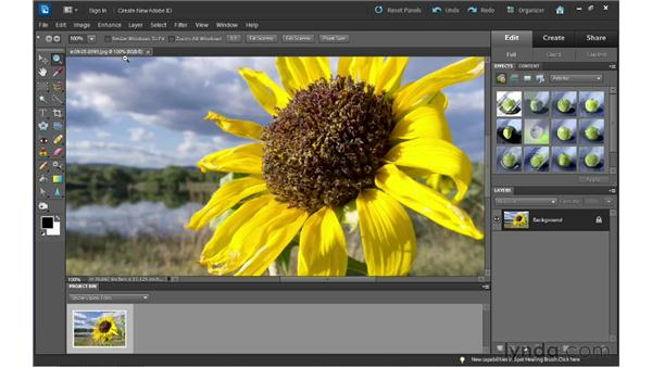 Zooming and navigating: Photoshop Elements 10 Essential Training