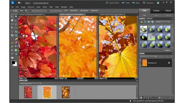 Working with multiple documents: Photoshop Elements 10 Essential Training
