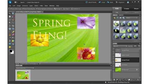 Understanding layers: Photoshop Elements 10 Essential Training