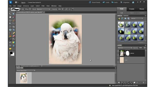 Understanding layer masks: Photoshop Elements 10 Essential Training