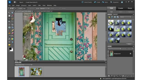Modifying selections: Photoshop Elements 10 Essential Training