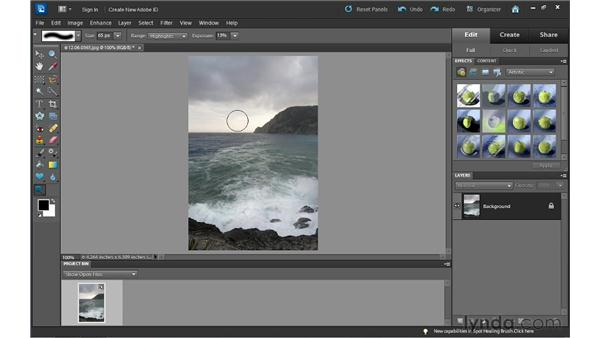 Using the Dodge, Burn, and Sponge tools: Photoshop Elements 10 Essential Training
