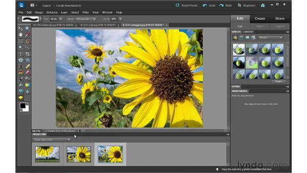 Understanding color management: Photoshop Elements 10 Essential Training