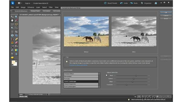 Converting color to black and white: Photoshop Elements 10 Essential Training