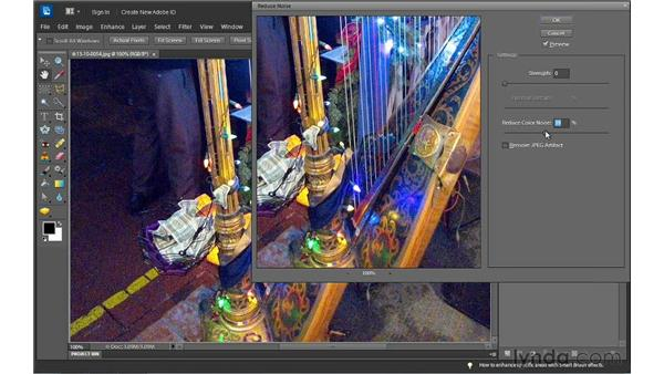 Reducing noise: Photoshop Elements 10 Essential Training