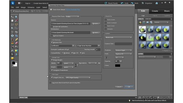 Processing multiple photos: Photoshop Elements 10 Essential Training