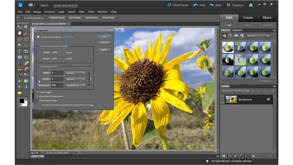 Resizing and changing photo resolution: Photoshop Elements 10 Essential Training