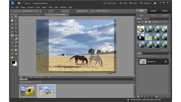Cropping photos: Photoshop Elements 10 Essential Training