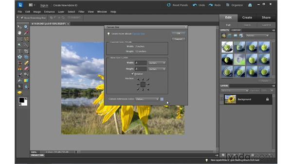 Adding canvas around photos: Photoshop Elements 10 Essential Training