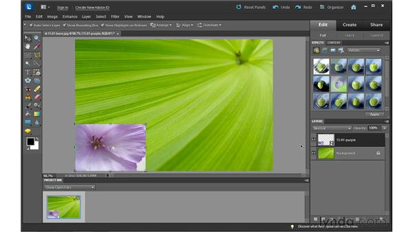 Combining photos using the Place command: Photoshop Elements 10 Essential Training
