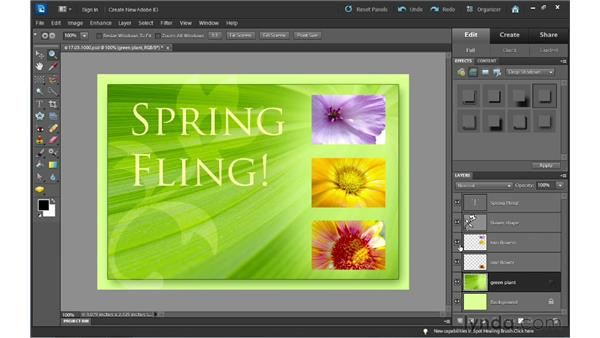 Adding layer styles: Photoshop Elements 10 Essential Training