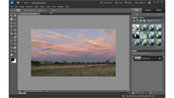Using the Cookie Cutter tool: Photoshop Elements 10 Essential Training