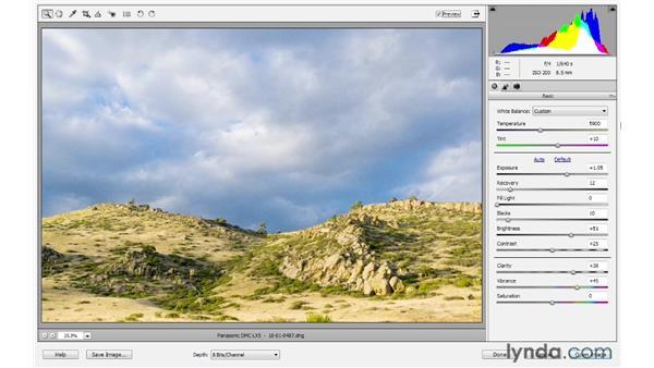 Understanding Camera Raw: Photoshop Elements 10 Essential Training