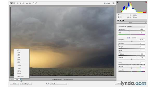 The Camera Raw interface: Photoshop Elements 10 Essential Training
