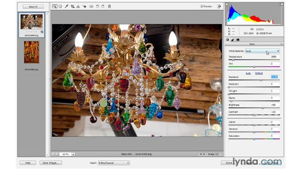 Adjusting color using the white balance controls: Photoshop Elements 10 Essential Training