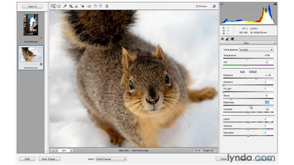 Controlling lighting and contrast: Photoshop Elements 10 Essential Training