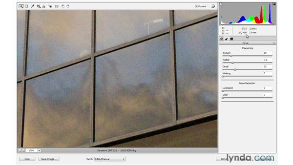 Reducing Noise: Photoshop Elements 10 Essential Training