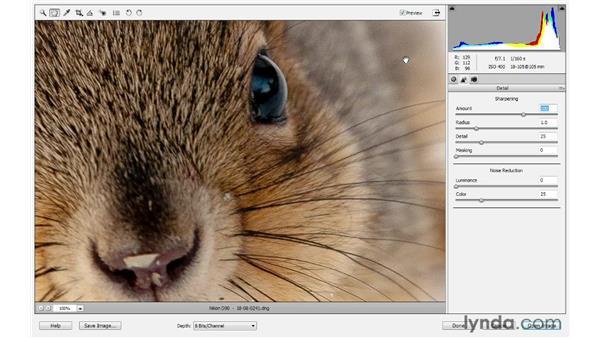 Sharpening: Photoshop Elements 10 Essential Training