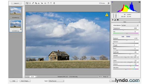 Processing multiple photos in Camera Raw: Photoshop Elements 10 Essential Training