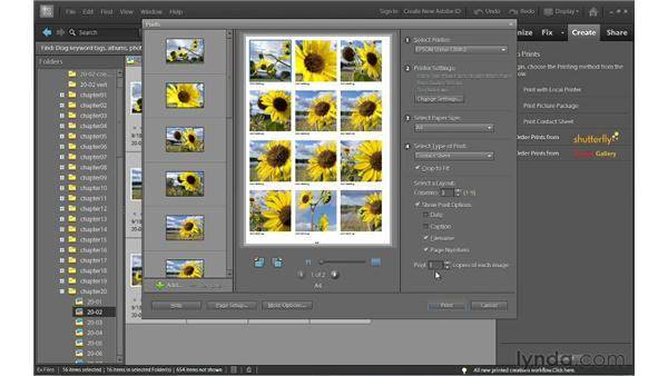 Printing contact sheets and picture packages in Windows: Photoshop Elements 10 Essential Training