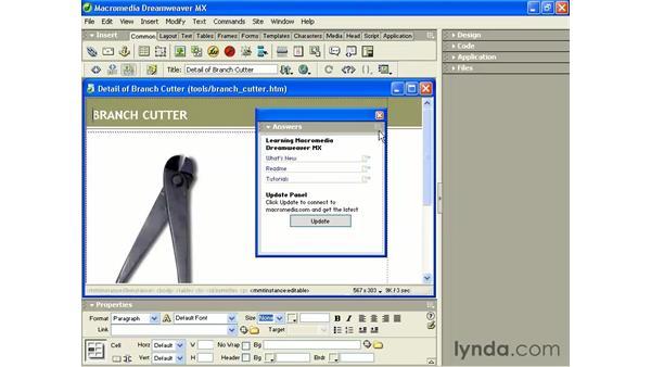 what's new in Dreamweaver MX: Intermediate Dreamweaver MX