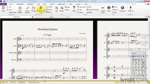 Exploring the Sibelius window: Sibelius 7 Essential Training
