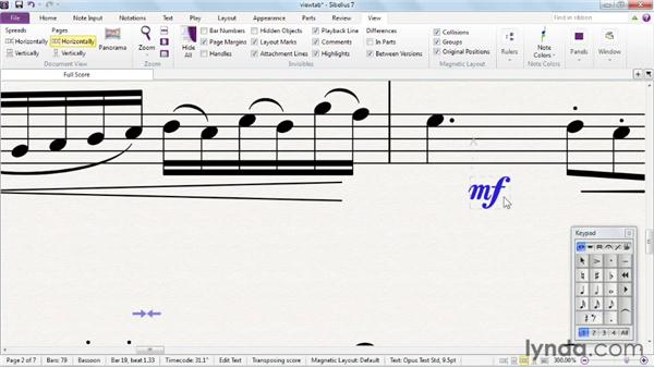 Personalizing the view: Sibelius 7 Essential Training