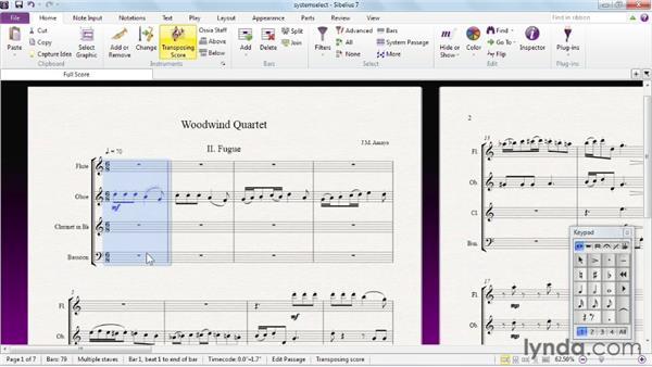 System selection: Sibelius 7 Essential Training