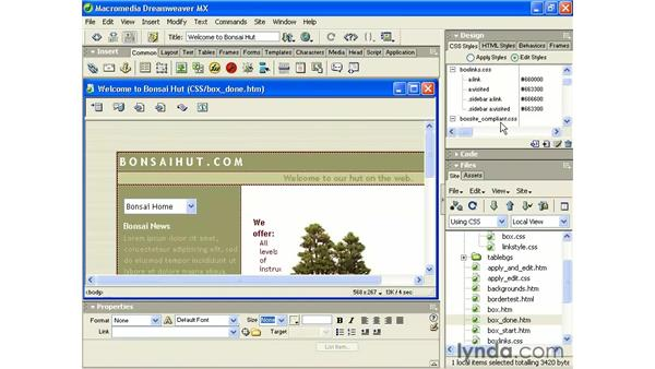 styling your links: Intermediate Dreamweaver MX