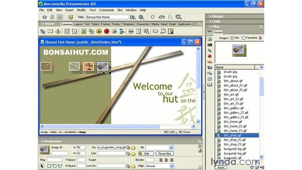 using swap image: Intermediate Dreamweaver MX