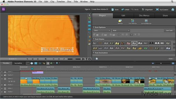 Adding a title graphic: Creating a Mini Documentary with Premiere Elements
