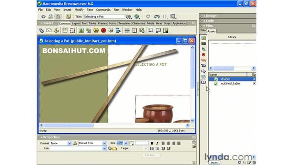 inserting a library item: Intermediate Dreamweaver MX