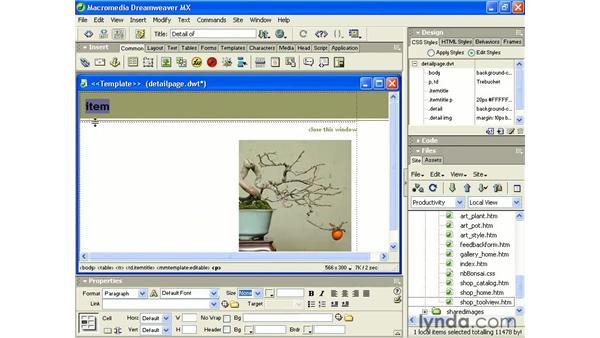 editable vs. locked regions: Intermediate Dreamweaver MX