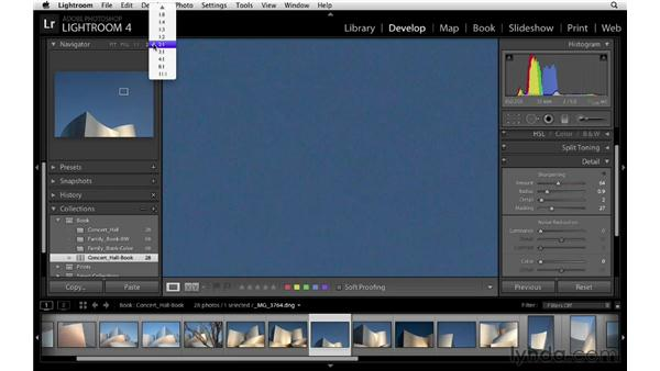 Applying global adjustments to multiple photographs: Lightroom 4 Essentials: 03 Creating Prints and Books