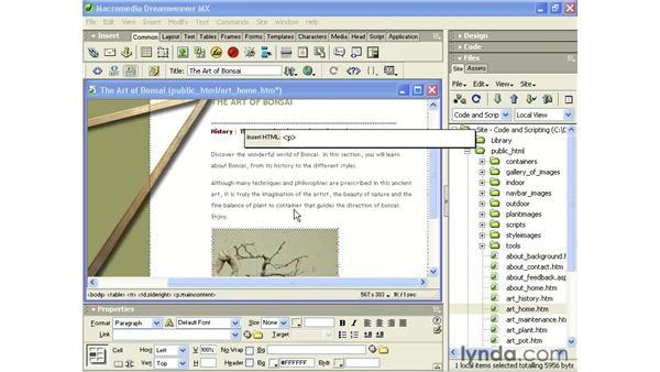 tag editors and code hints: Intermediate Dreamweaver MX