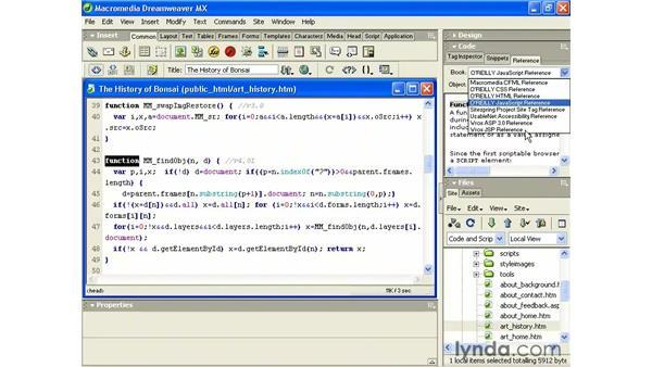 the reference panel: Intermediate Dreamweaver MX