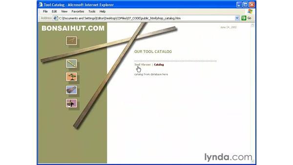 using the PVII link scrubber: Intermediate Dreamweaver MX