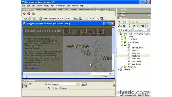 using an echo directive: Intermediate Dreamweaver MX