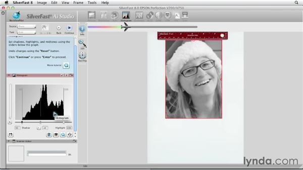 Scanning a color photo as a grayscale image : Scanning with SilverFast