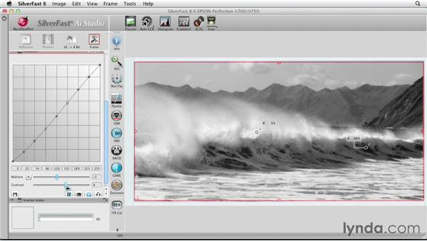 Scanning a color photo as a grayscale image: Scanning with SilverFast