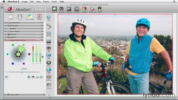 Making a selective color replacement: Scanning with SilverFast