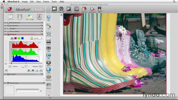 Exploring automatic color correction in manual mode: Scanning with SilverFast