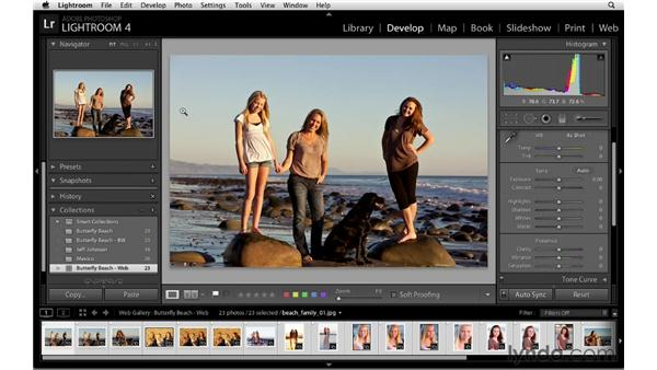Creating web gallery collections: Lightroom 4 Essentials: 04 Creating Slideshows and Web Galleries