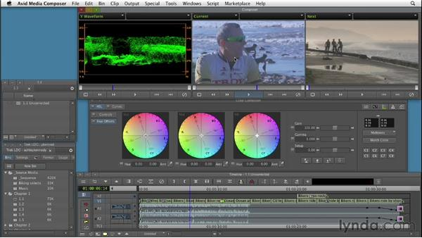 Why color correction?: Color Correction: Creating a Polished Look in Avid Media Composer