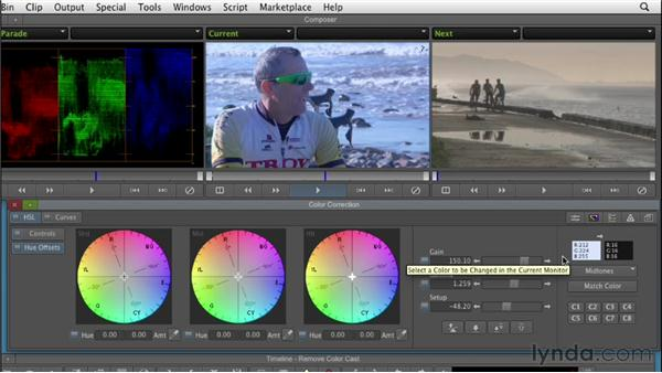 Removing color casts: Color Correction: Creating a Polished Look in Avid Media Composer
