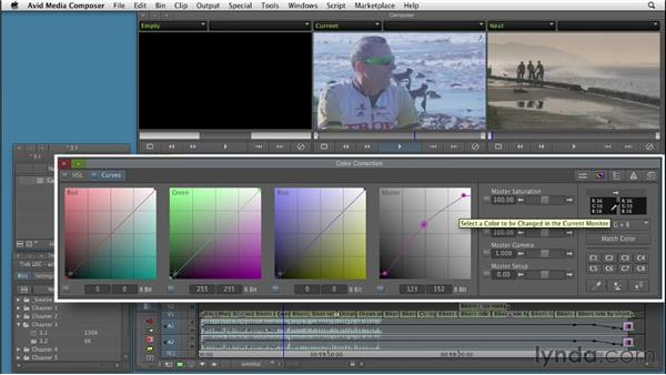 Working in the Curves group: Color Correction: Creating a Polished Look in Avid Media Composer