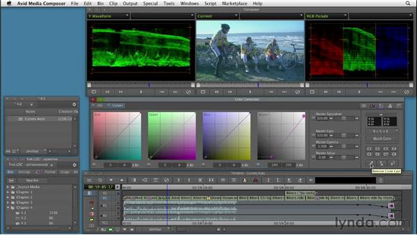 Using automatic color correction controls in Curves: Color Correction: Creating a Polished Look in Avid Media Composer