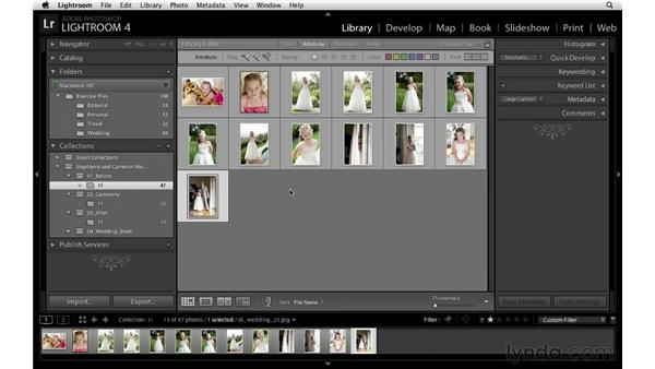 Using collections to sort out the keepers: Lightroom Workflow Strategies